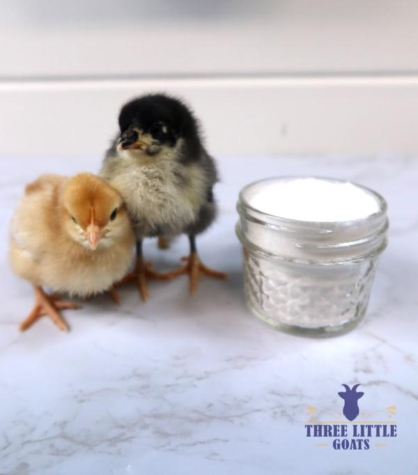 Homemade Chicken Electrolyte Recipe